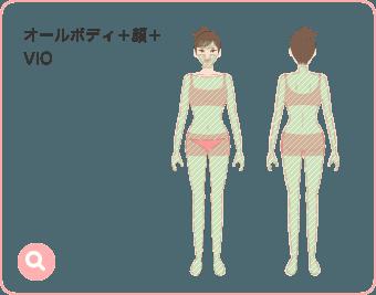 オールボディ+顔+VIO